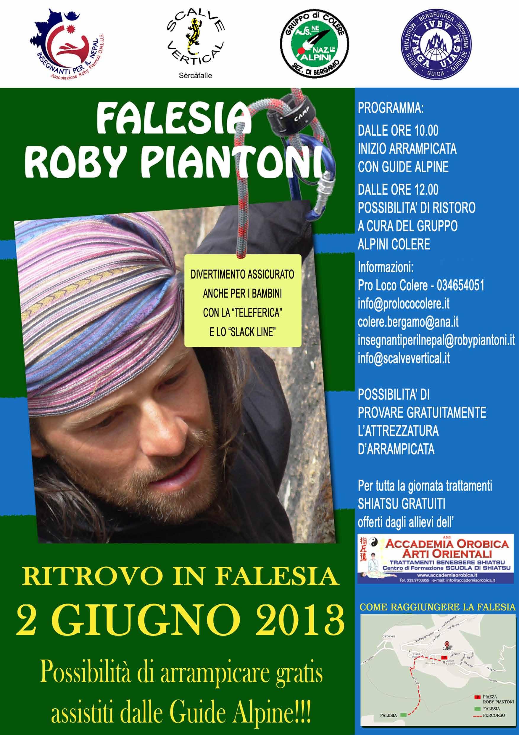 Locandina Falesia 2013